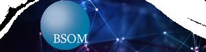 BSOM JV – Bering Straits Orion Management Joint Venture
